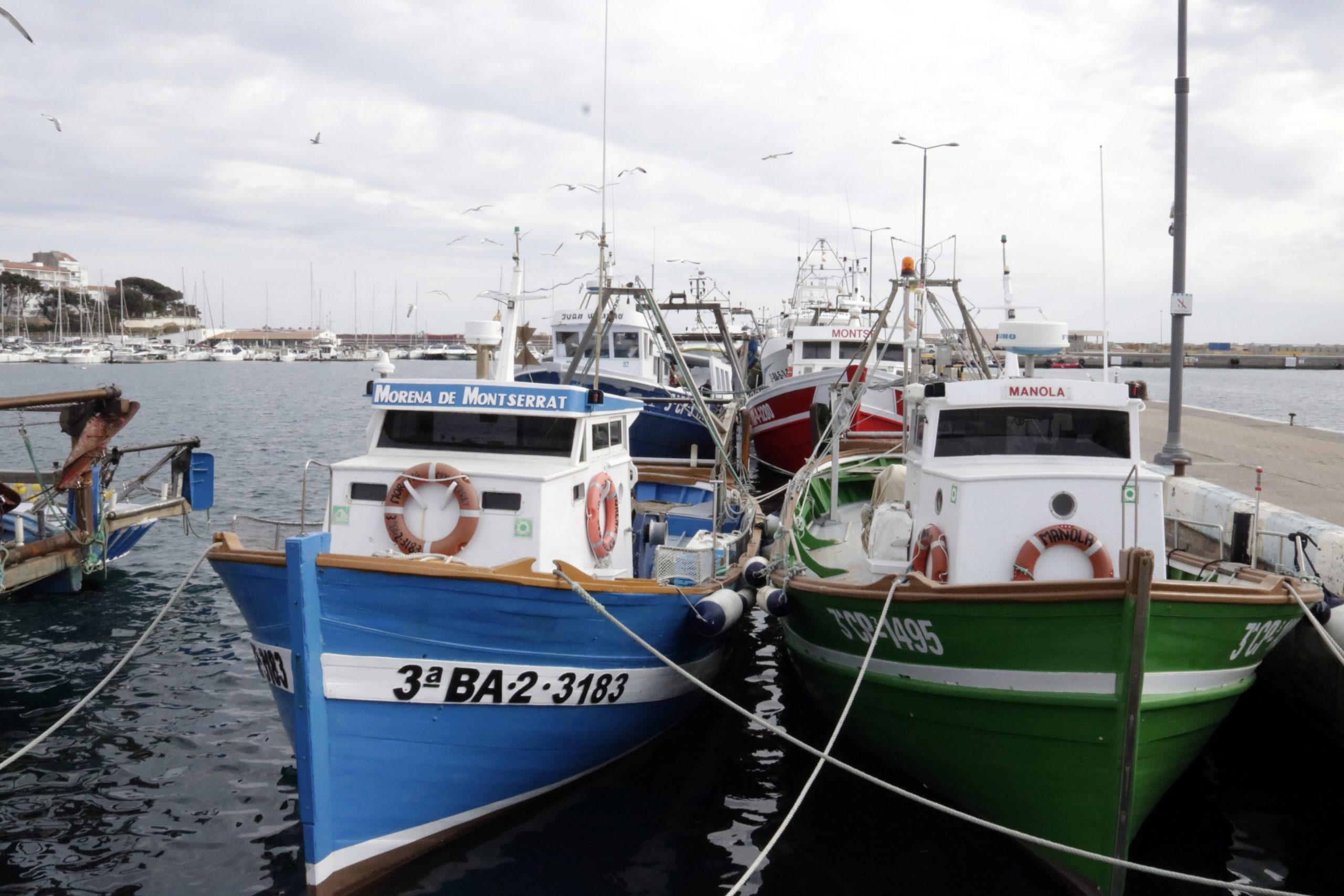 La flota pesquera de Palamós amarrada a port | ACN