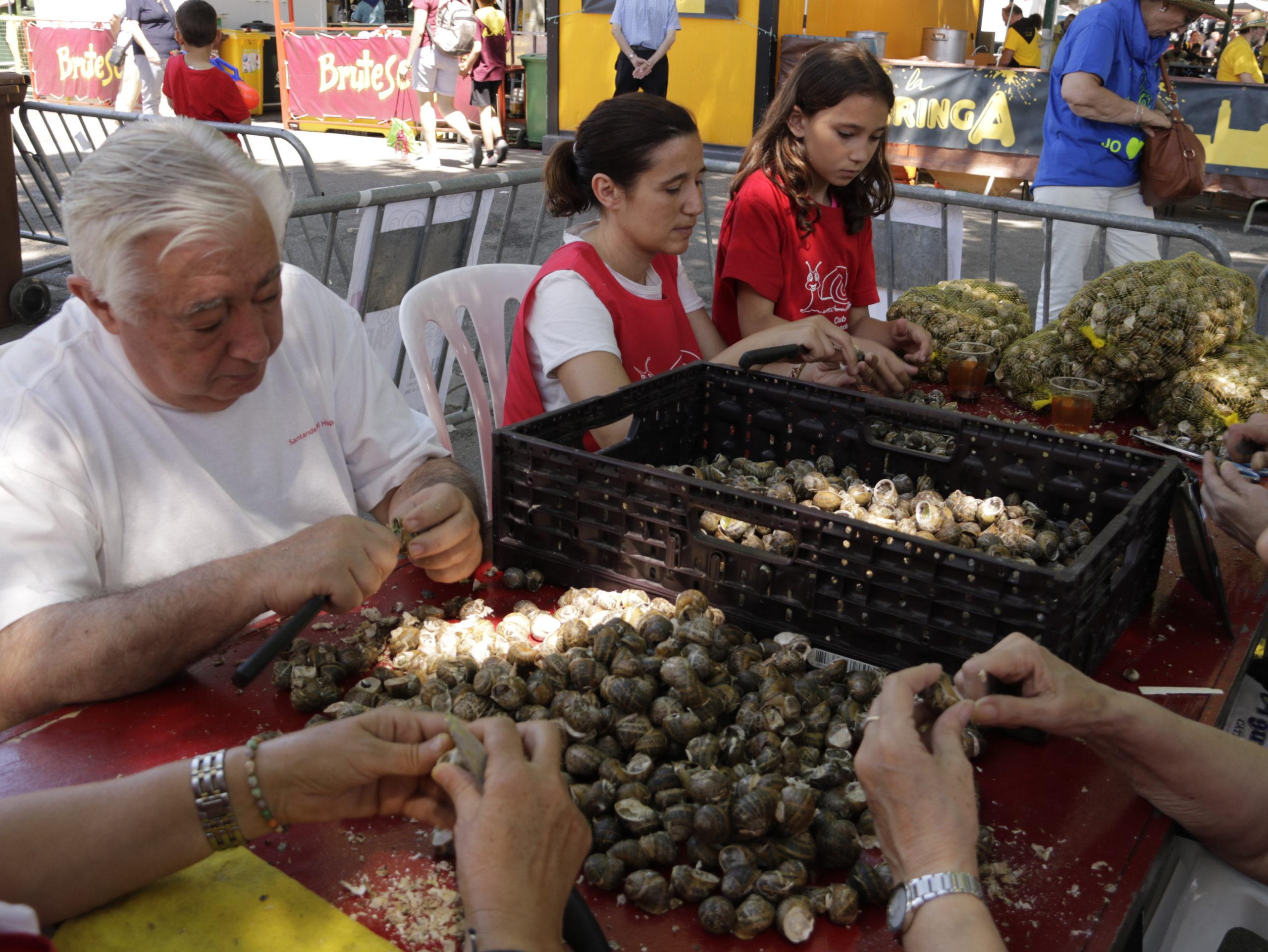 Els membres d'una de les colles de l'Aplec del Caragol de Lleida triant i netejant caragols per dinar   ACN