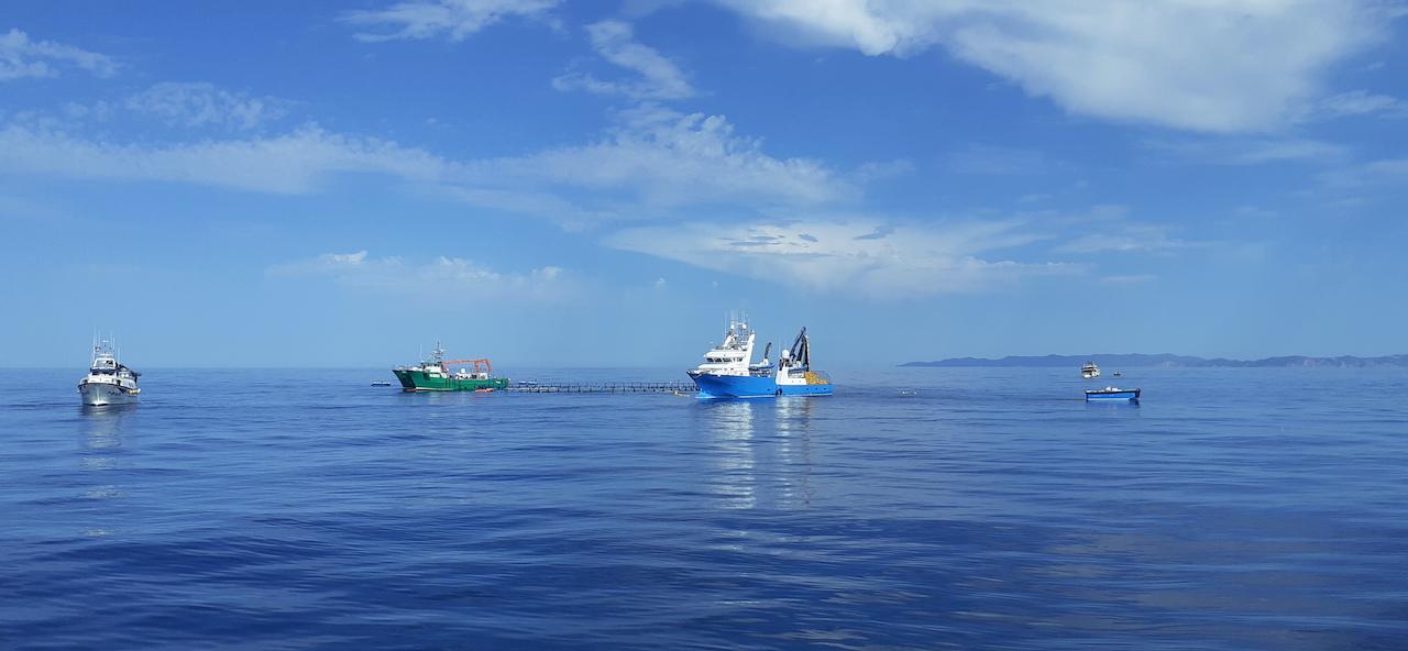 Una de les embarcacions d'encerclament de Balfegó passant pel costat de la granja davant la costa de l'Ametlla de Mar | ACN