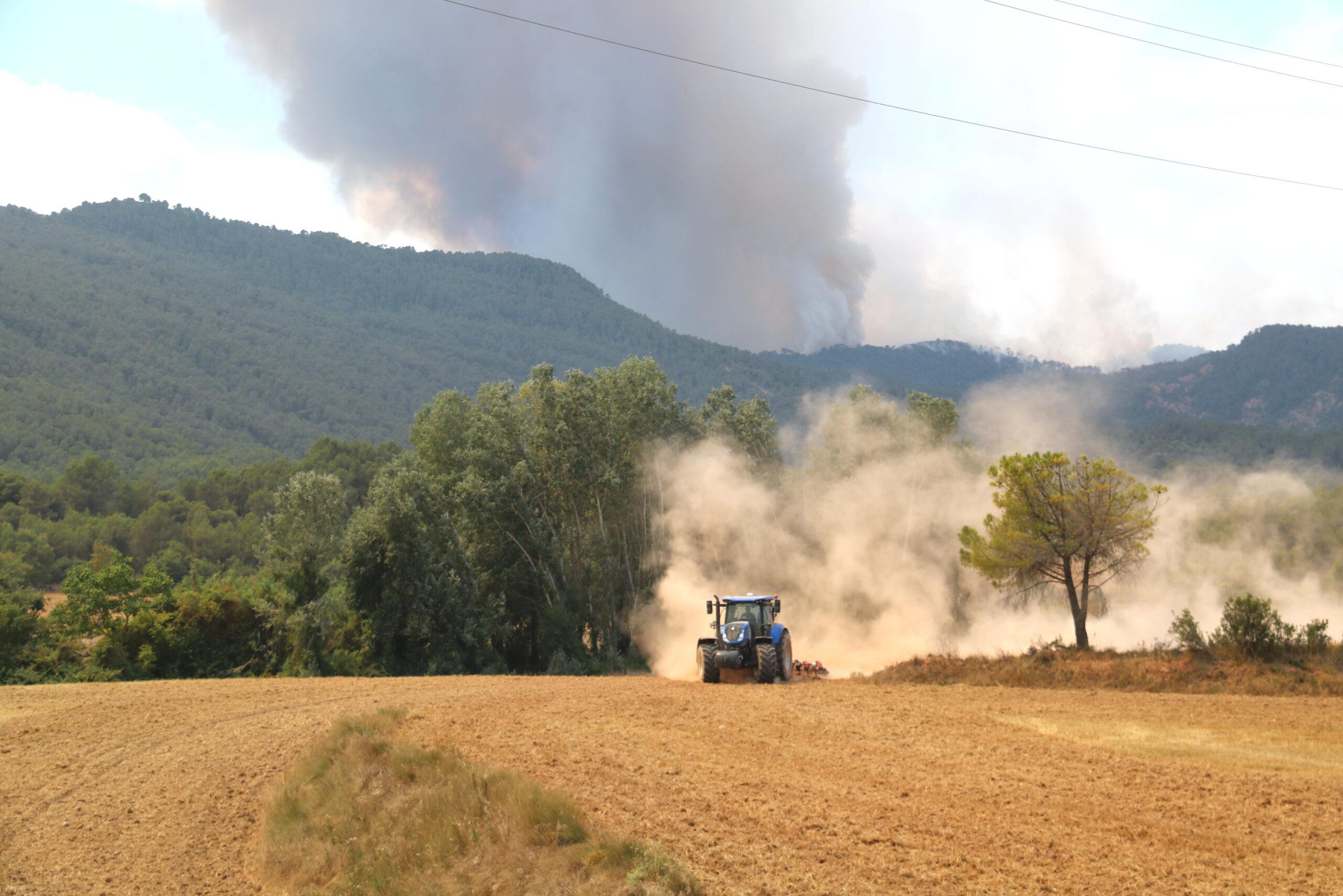 Un tractor llaurant un camp de cereal segat a Sant Martí de Tous, davant la columna de fum del foc que encara és molt actiu al flanc esquerre del cap de l'incendi   ACN