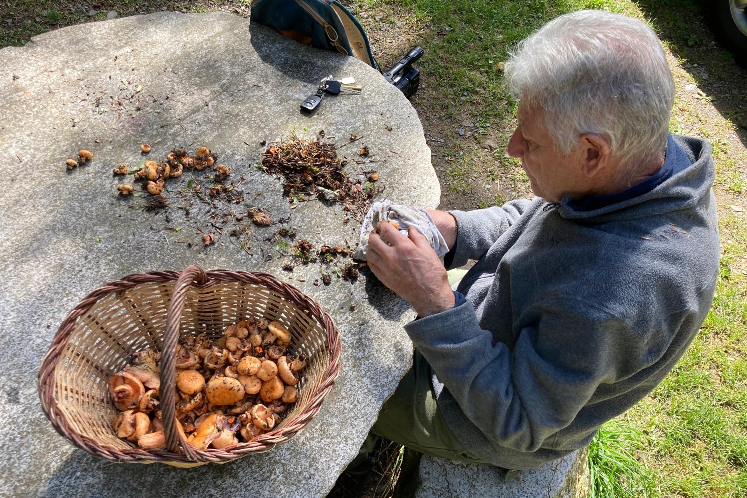 Un home netejant els bolets a Campelles (Ripollès) | ACN